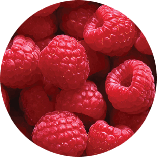 Raspberry Seed Oil Extract image