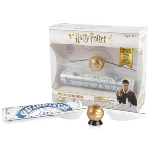 Mystery Flying Snitch Harry Potter Quidditch Wizarding World