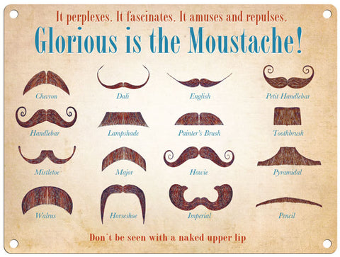 Glorious Moustache - Martin Wiscombe