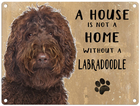 House is not a home - Brown Labradoodle