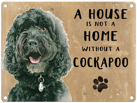 House is not a home - Black Cockapoo