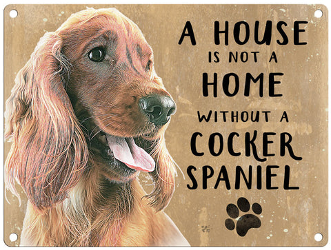 House is not a home - Cocker Spaniel Brown
