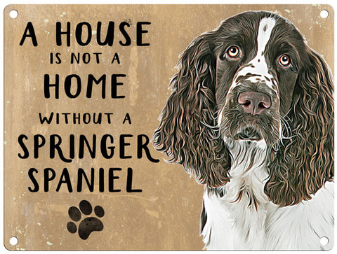 House is not a home - Springer Spaniel