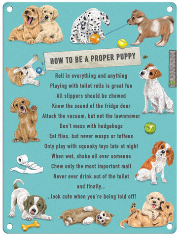 How To Be A Proper Puppy