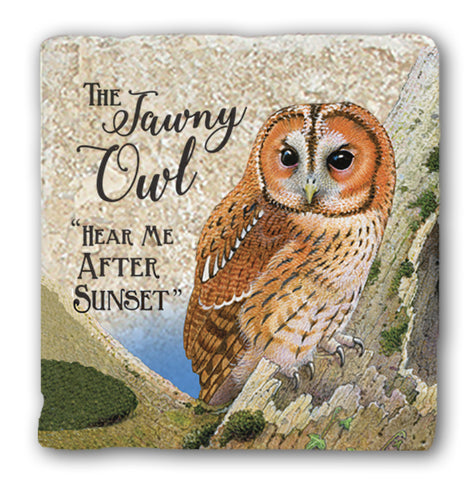 Marble Coaster - Tawny Owl Marble Coaster (Single)
