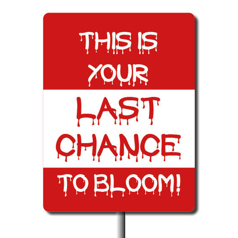 Plant Marker - Last Chance To Bloom
