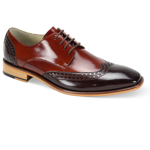 Giovanni Gala Chocolate Brown/Cognac  Wingtip Oxford Shoes