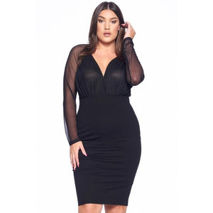 CELESTE MESH LONG SLEEVE DRESS