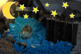 Furnishables Starlit Nights static cling sticker theme for decorating and customising cages and tanks.