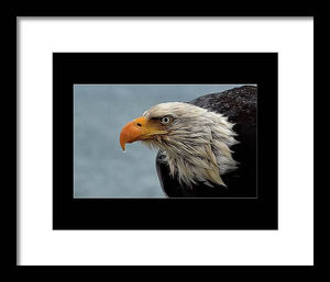 Eagle up close - Framed Print