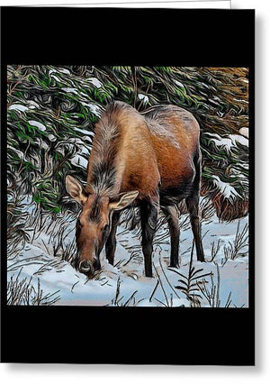 Moose - Greeting Card