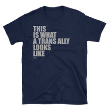 What Trans Looks Like - Ally Tee