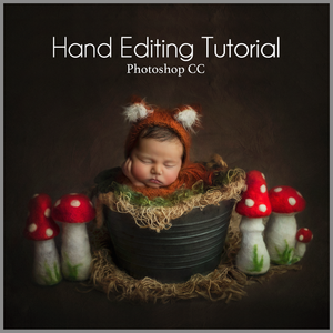 Fox and Toadstools Newborn Editing Tutorial | Photoshop Class