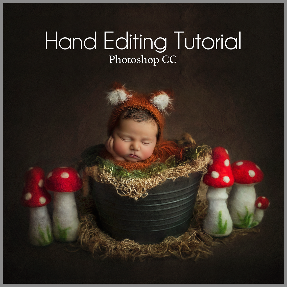 Fox and Toadstools Newborn Editing Tutorial | Photoshop Class - Dream Artsy Actions Tutorials