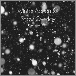 WINTER - Let it Snow - Action Set and Overlay - Dream Artsy Actions Tutorials