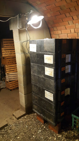 root cellar for storage at Great Lakes Staple Seeds