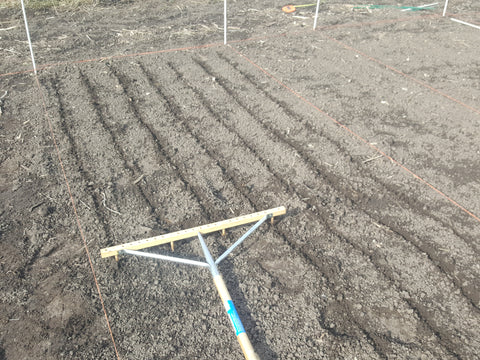 Marking the seed furrows uniformly