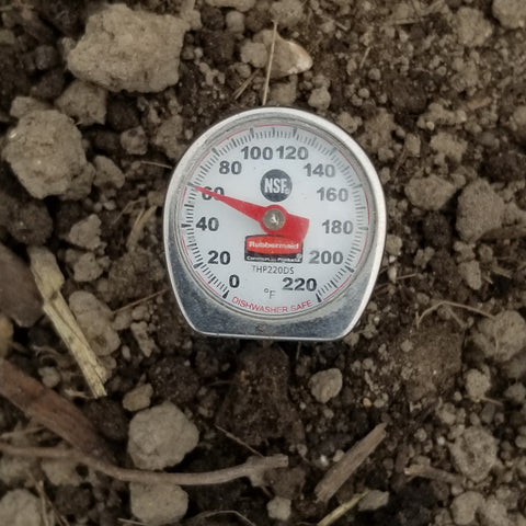 Soil temperature of 60F meets the 55F requirement for corn