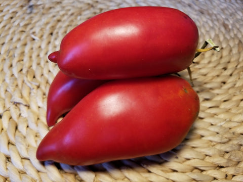Polish Linguisa Tomato