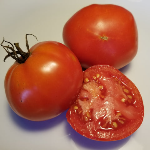 Indiana Baltimore Tomato