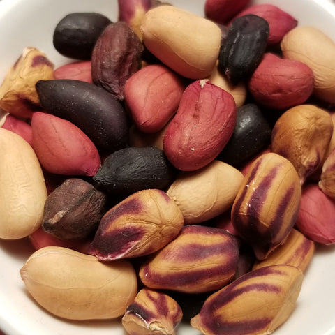 Composite Mix Peanut Seeds