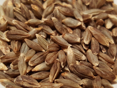 Naked Food Barley 108-414 seeds