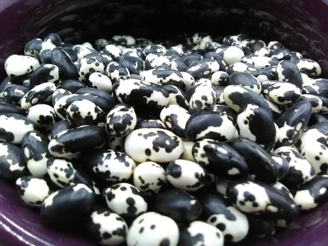dry Vaquero beans (Phaseolus vulgaris) in a bowl