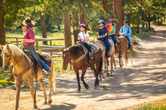 Getting to Know the Health Benefits of Horseback Riding for Children