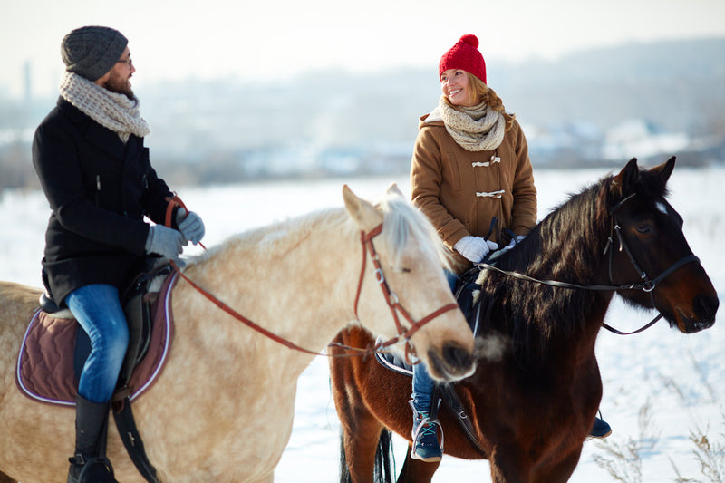 Planning a Winter Horseback Ride? Consider These Tips Before Jumping In The Saddle!