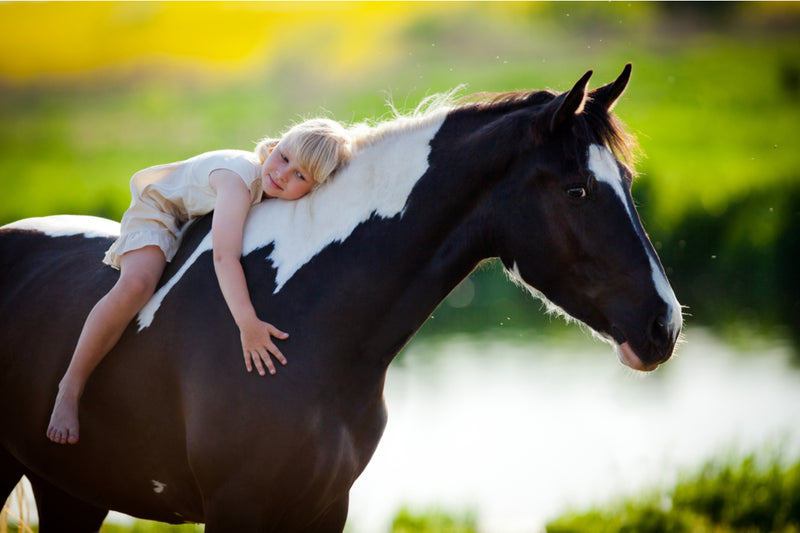 Why Encouraging Your Child to Ride Horses is Wise