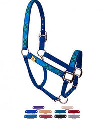 Personalized Name Blue Kilt High Fashion Horse Halter