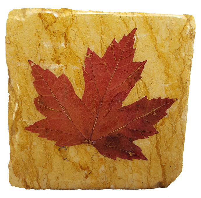 Maple Leaf Yellow Marble Coaster