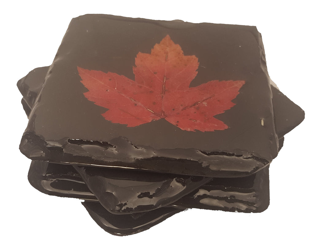 Set of 4 Maple leaf Slate Coasters