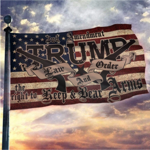 Trump 2020 Law & Order 2nd Amendment Guns Flag + Trump 2020 Pin (New)