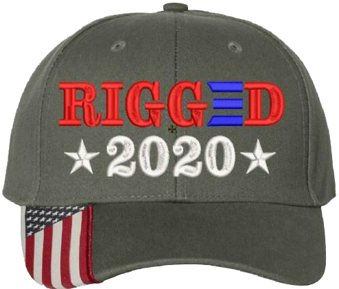 Rigged 2020 Embroidered Hat