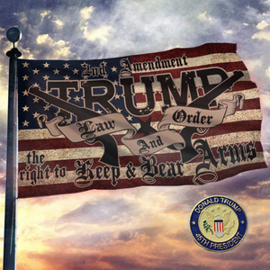 TRUMP 2020 LAW & ORDER 2nd AMENDMENT GUNS FLAG + 45th President Pin