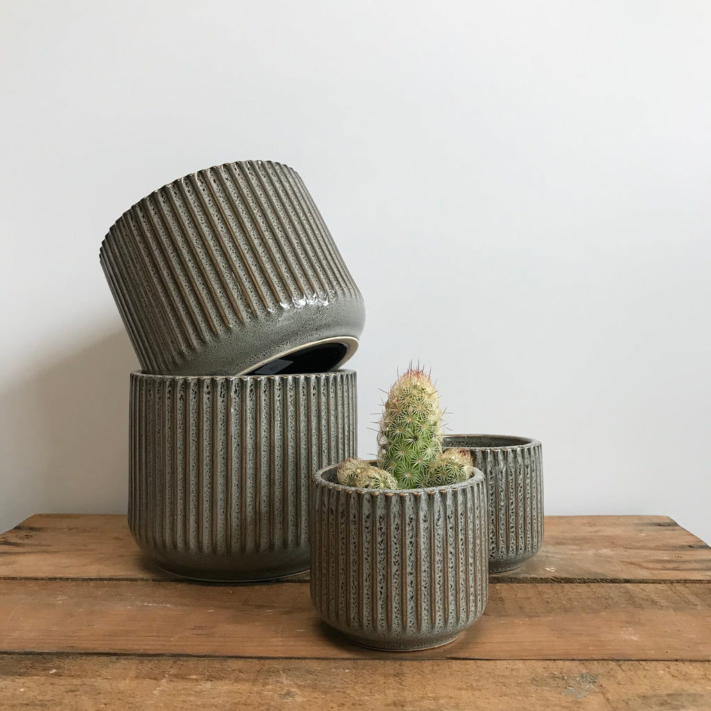 Striped Ceramic Pots