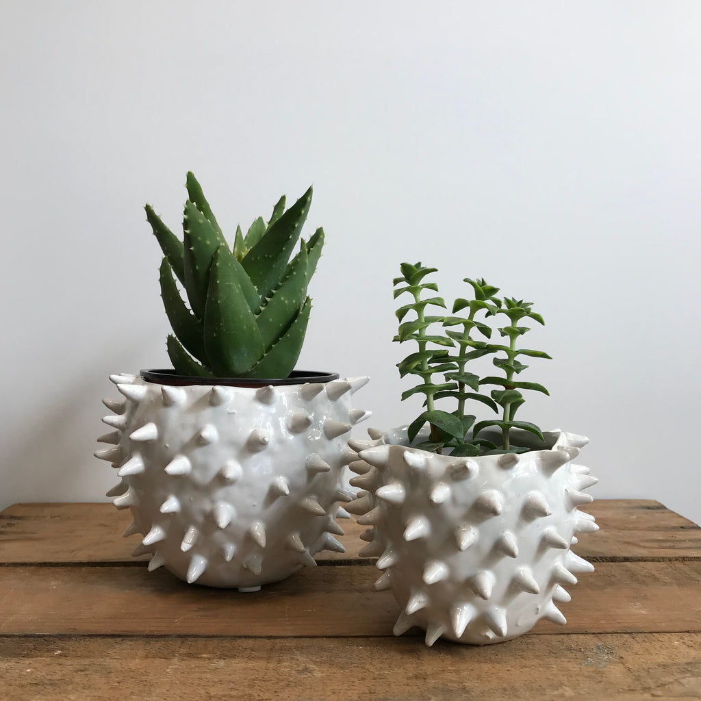 White Spiky Planter