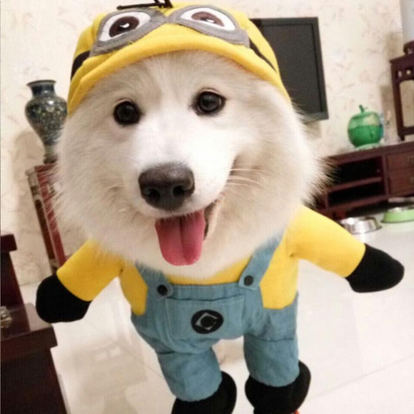 Minion Dog Costume for Halloween Dress Up
