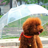 Transparent Waterproof Pet Umbrella