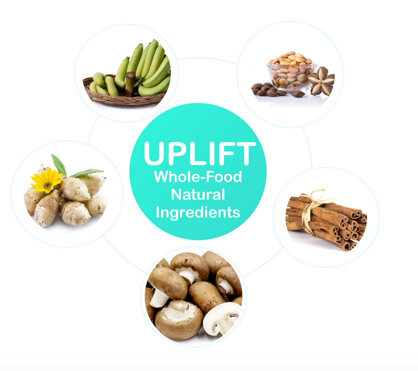 uplift food daily uplifter australia ingredients prebiotic resistant starch supplement