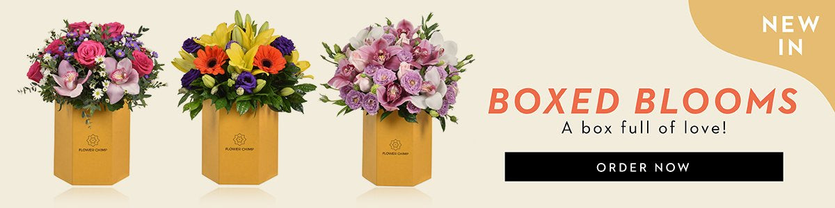relaunch of boxed blooms