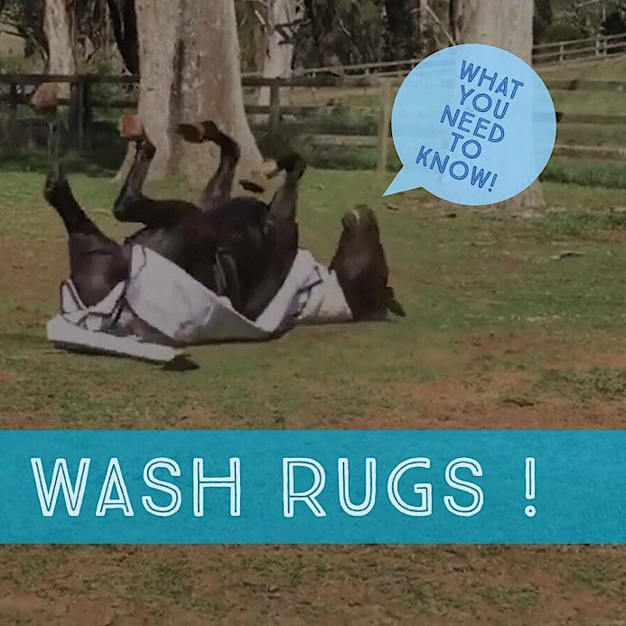 IMPORTANCE OF WASHING RUGS