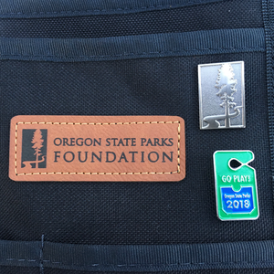 "Foundation 1"" Enamel Pin Set"