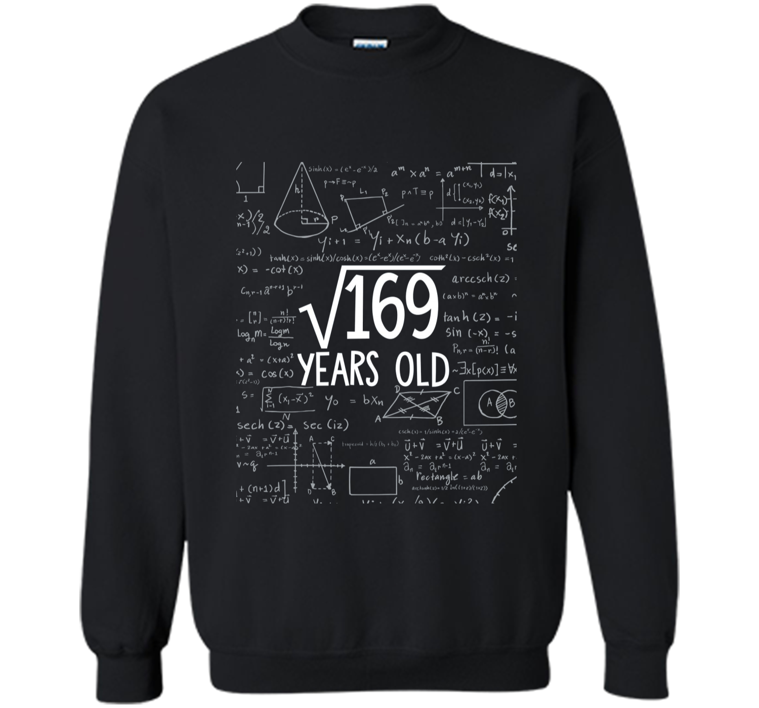 Square Root Of 169 13th Birthday 13 Years Old Printed Crewneck Pullover Sweatshirt