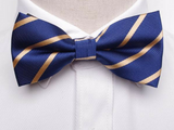 Pre-Tied Bowtie Navy Yellow Stripe