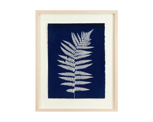 Limited Edition Framed Cyanotype - 10