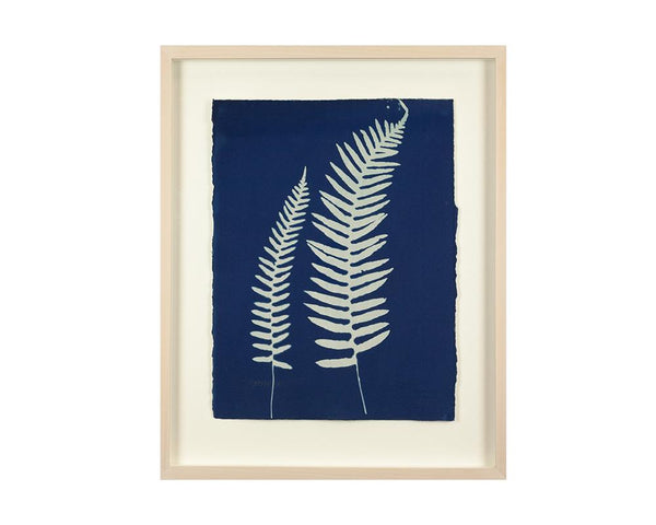 Limited Edition Framed Cyanotype - 13