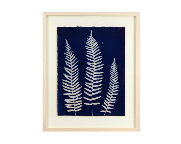 Limited Edition Framed Cyanotype - 1