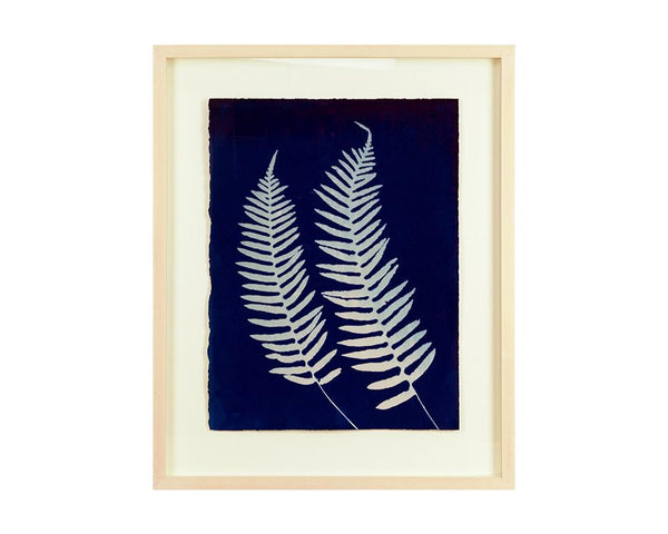 Limited Edition Framed Cyanotype - 2